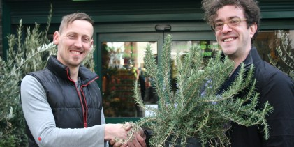 Garden centre steps up to replace stolen prized rosemary plant