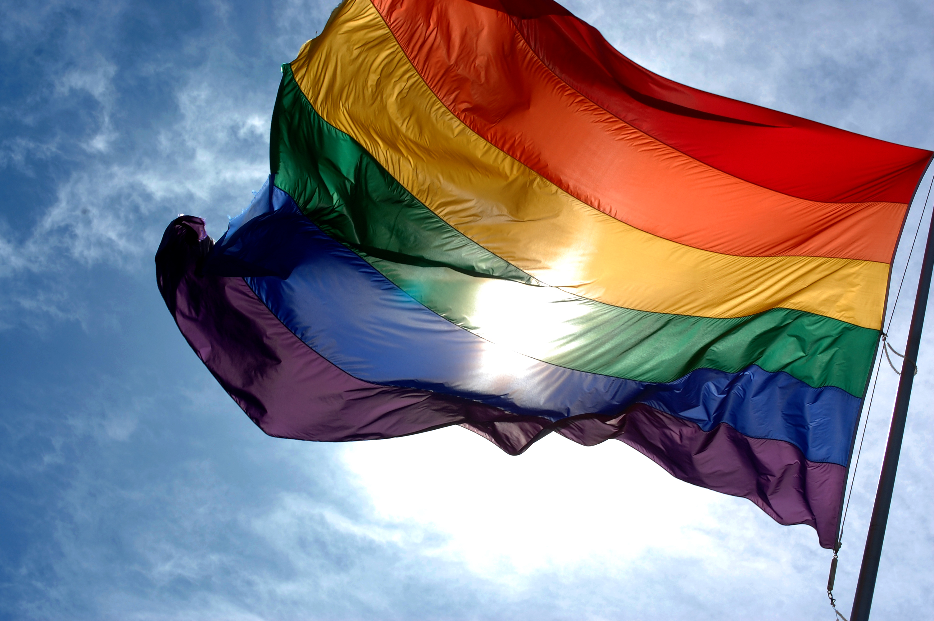 An image of the LGBT rainbow flag.