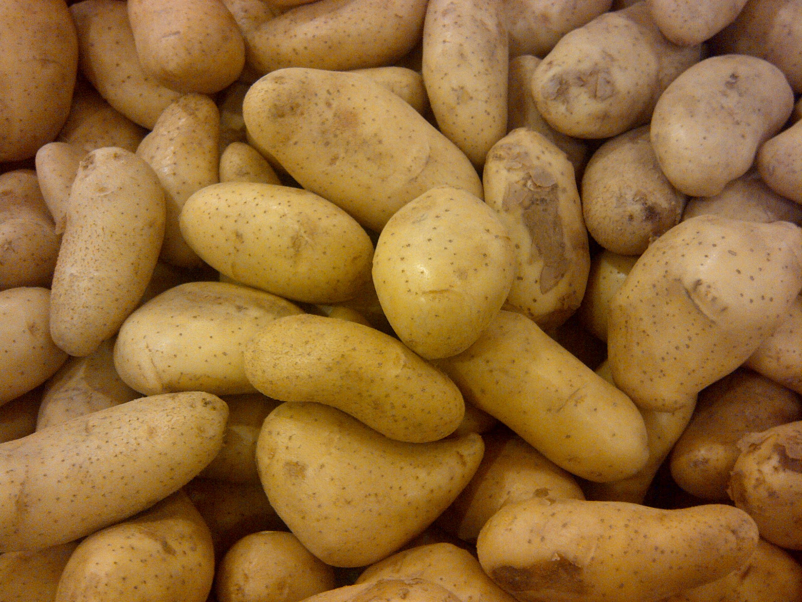 Potato_123
