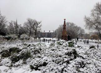 Clissold Park Hackney, Image : DAVID HOLT