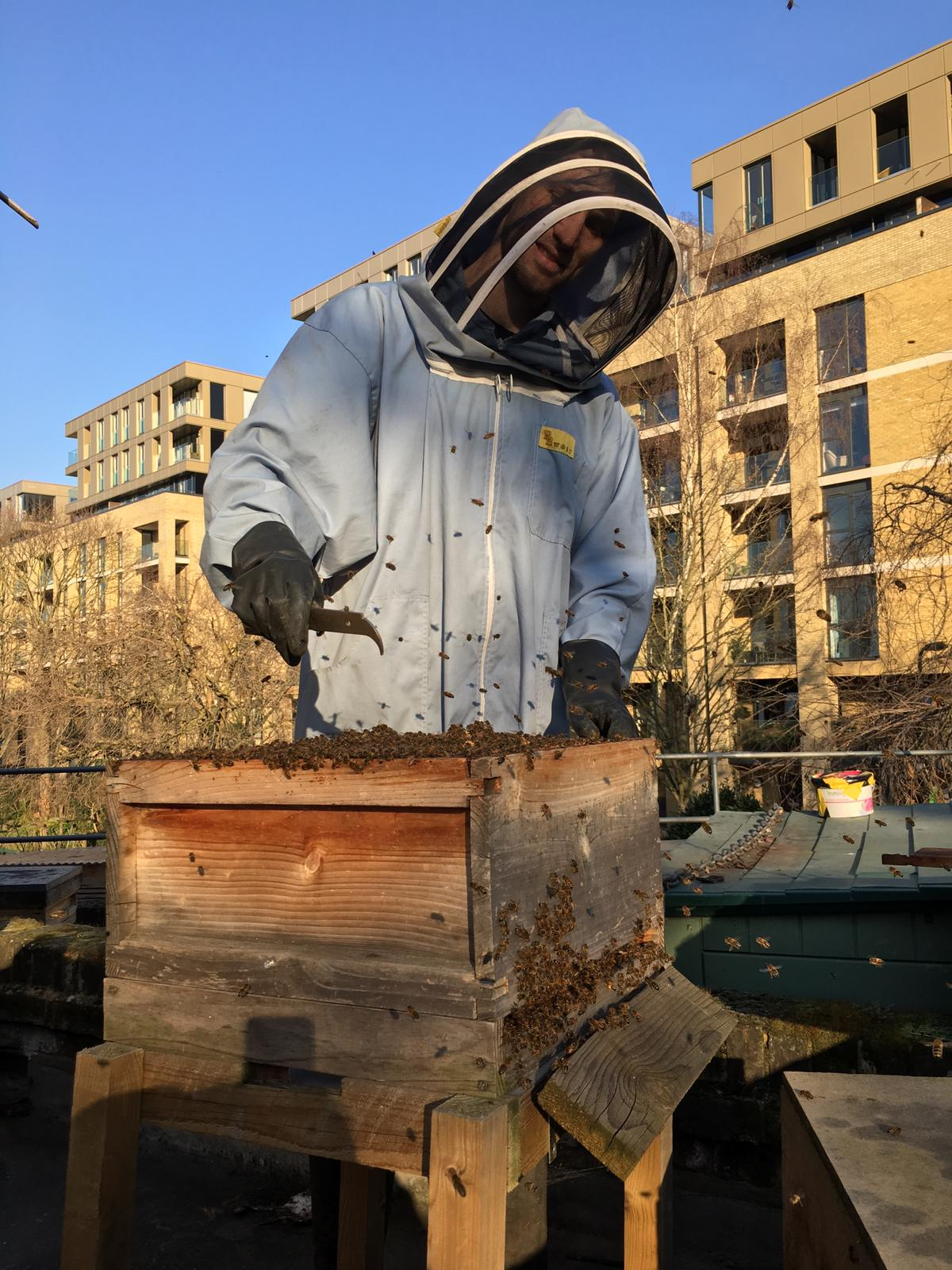 Photo of beekeeper Ken Hayes - credit Hackney City Farm